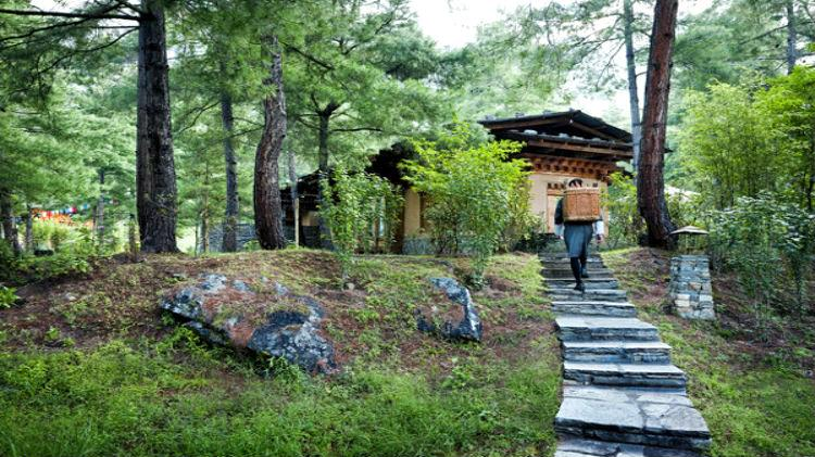 11 Day Uma Paro Himalayan Explorer Luxury Escape Druk Asia