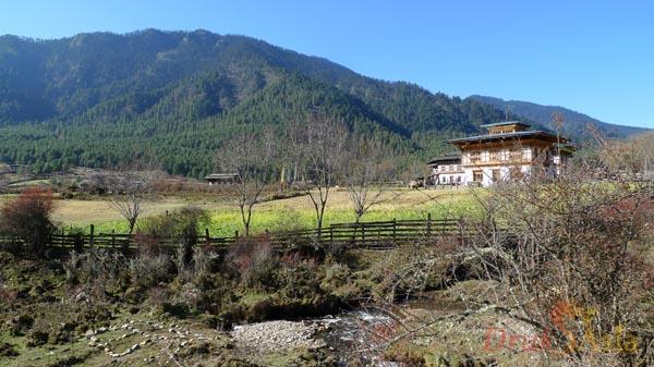 Phobjikha Valley